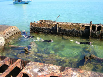Snorkelling the Tangalooma Wrecks with Supercat Charters